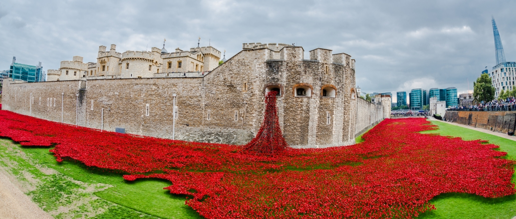 tower-of-london-blumen