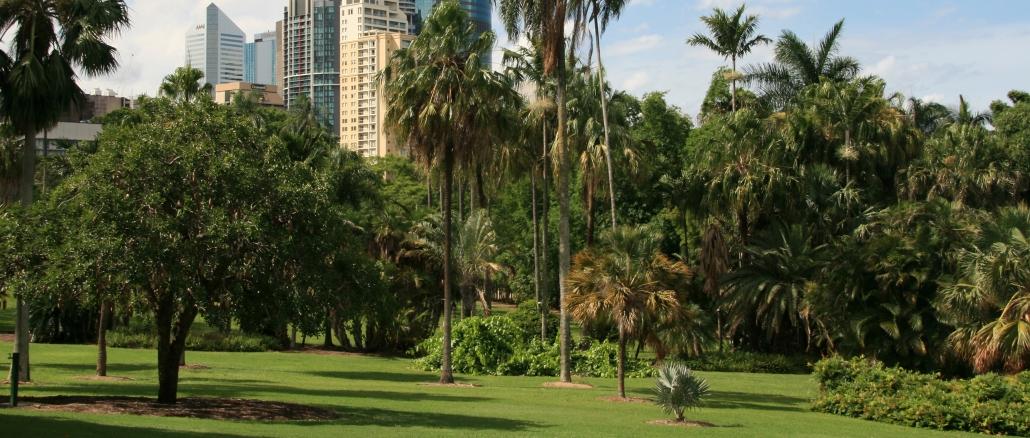 brisbane-city-botanic-gardens
