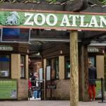 zoo-atlanta
